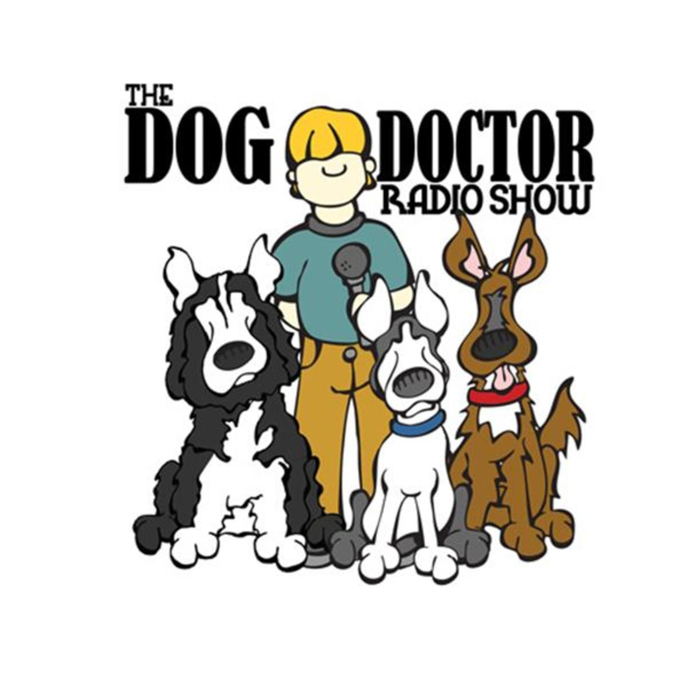 The Dog Doctor