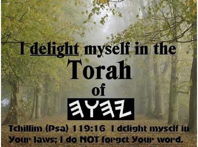 Torah Discussion The Spiritual Truths Of The Tabernacle