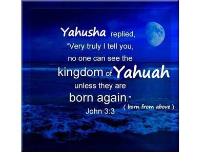 ROMANS 13: I PLEAD ALLEGIANCE TO THE KINGDOM OF YAHUAH, NOT OF THIS