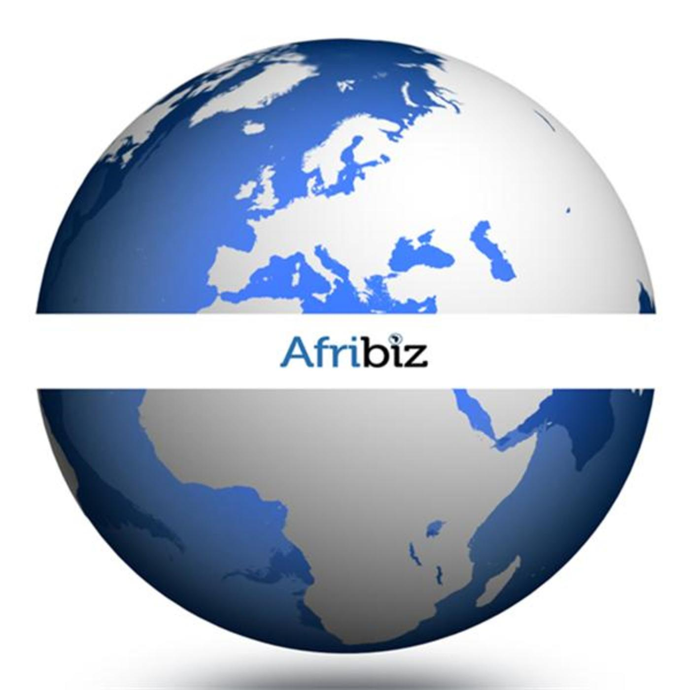 Afribiz: Business & Investment in Africa