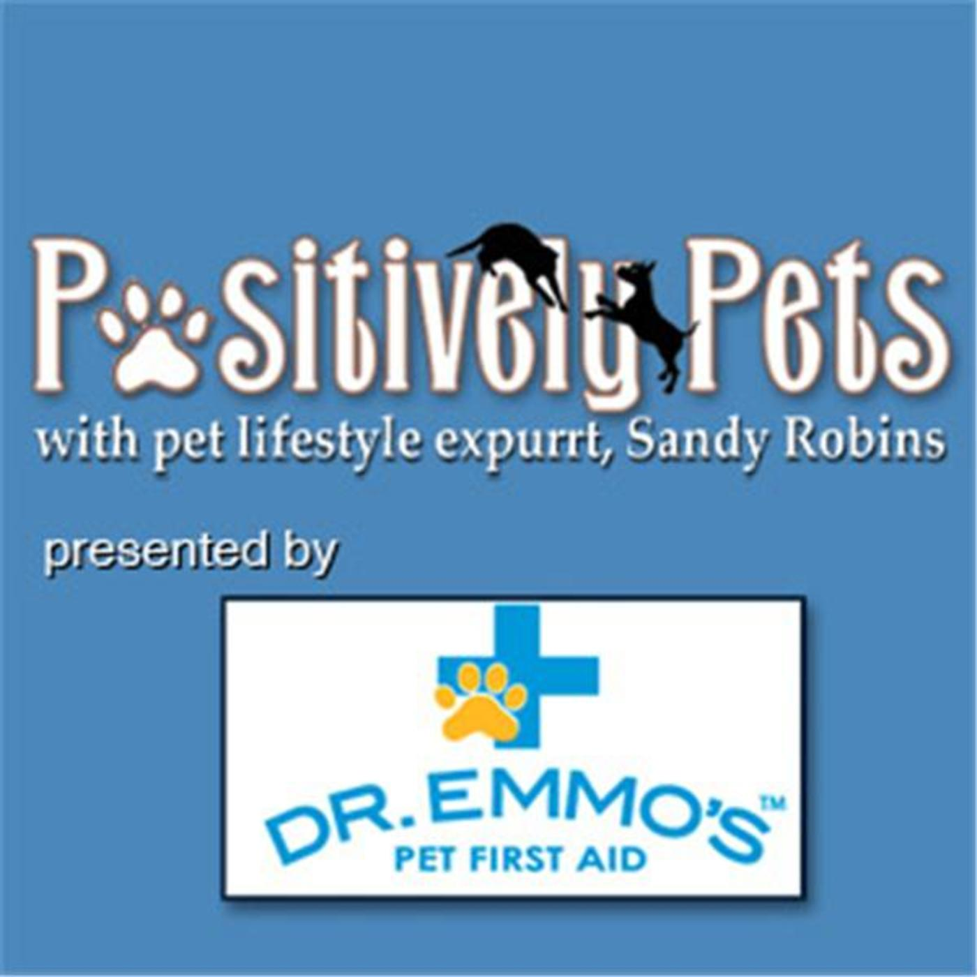 Pawsitively Pets with Sandy Robins