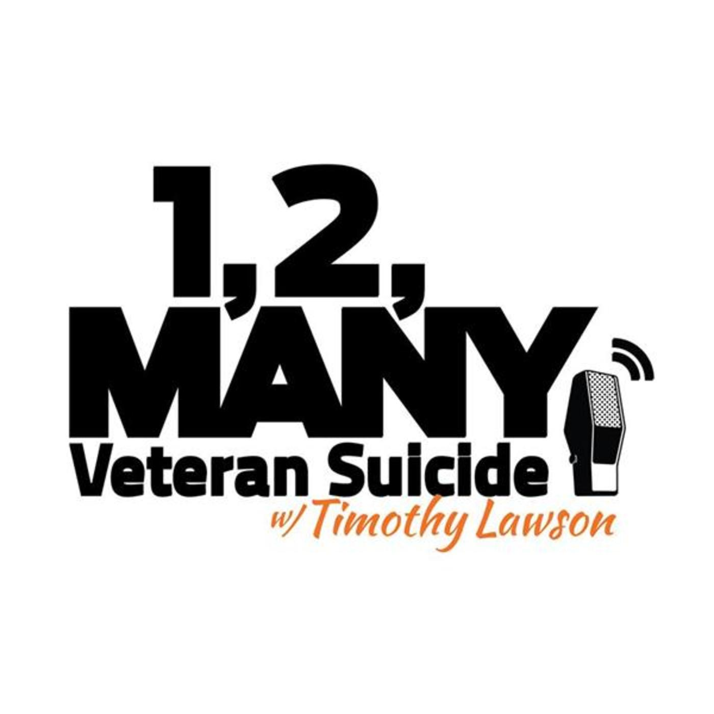 1, 2, Many: Veteran Suicide
