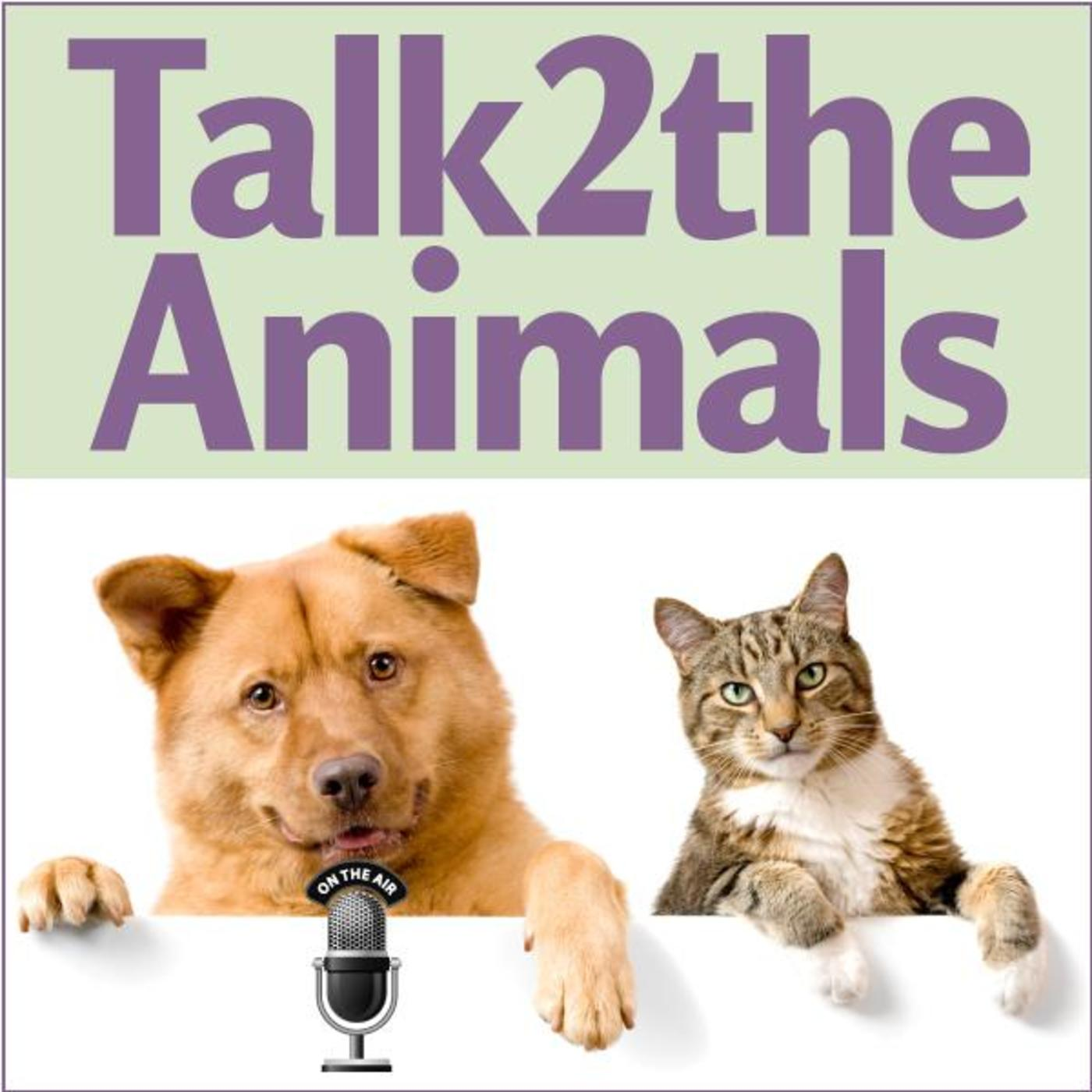 Talk2theAnimalsRadio