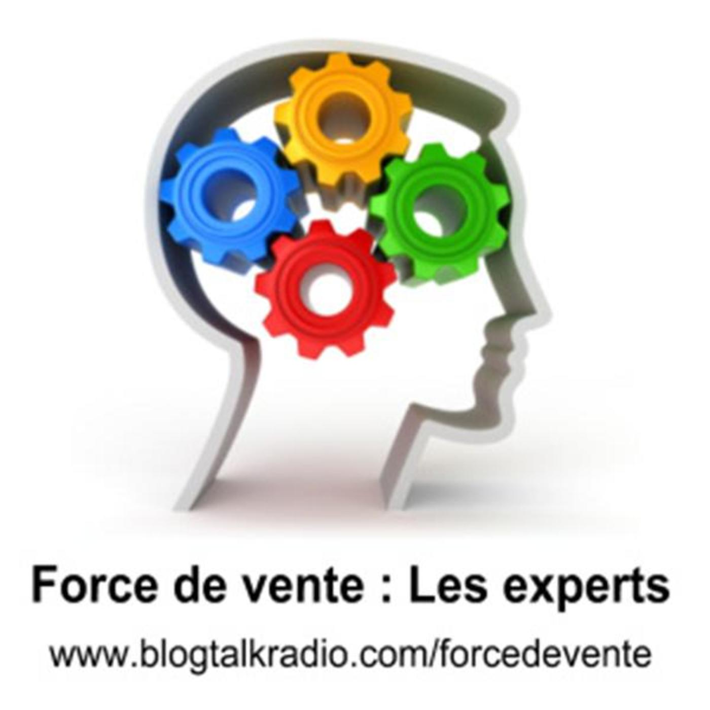 Force de vente : Les experts