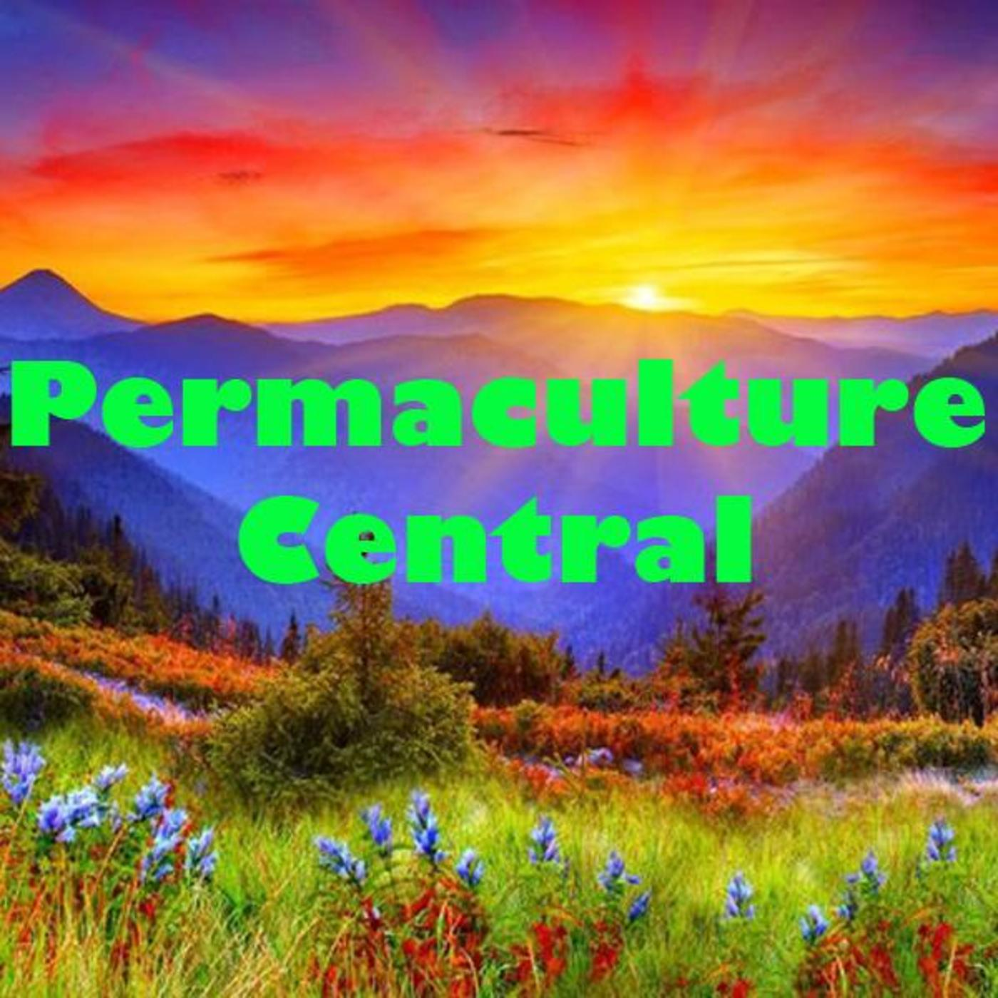 Permaculture Central