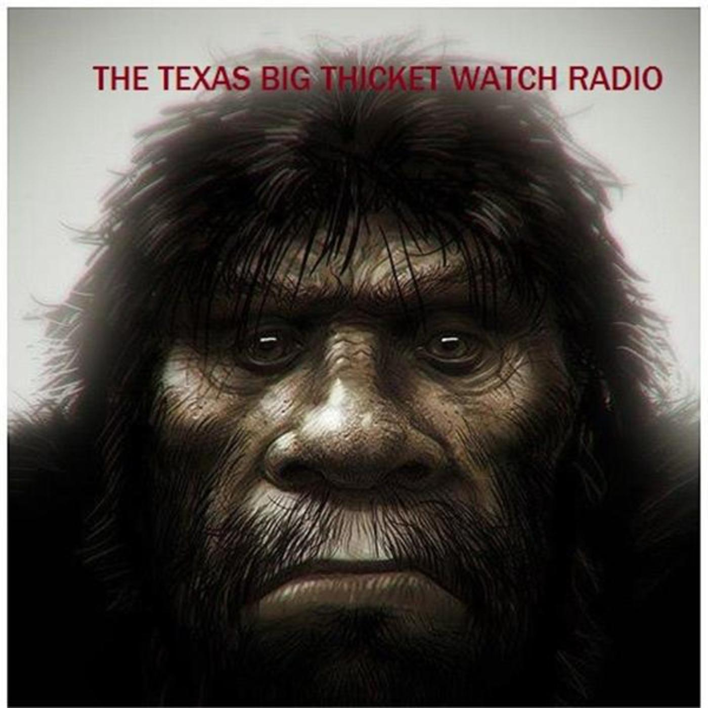 Talking To Mike Hall From The Texla Group The Big Thicket Watch Podcast