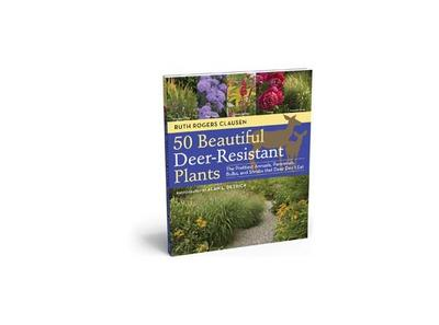 How To Grow A Deer-Tolerant Garden