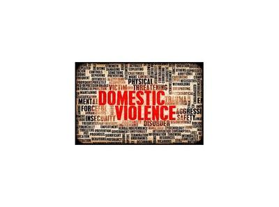 a discussion of victims of domestic violence in united states