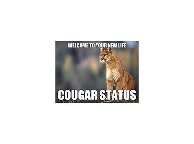 motley cougar women Best cougar bars in nj  looking for places that are good to go out and meet older women  idk why but the cougs fucking love bon jovi and motley crue permalink.