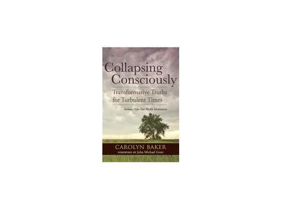 collapsing consciously meditations baker carolyn